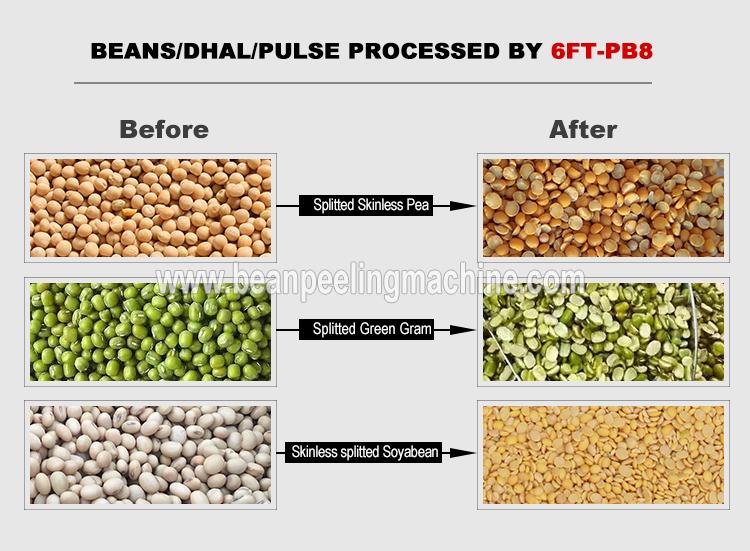 split-bean.jpg